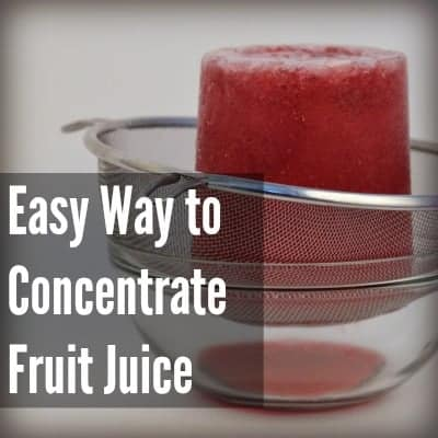"""Probably the """"Coolest"""" Technique to Date- Creating Fruit Concentrates"""