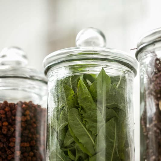 The Botanicals Make the Gin: Caorunn Gin & the Scottish Countryside