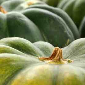 It's Pumpkin Spice Time: Ideas for Putting Pumpkin on the Menu