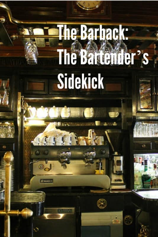 What is a Barback? The Ultimate Guide to the Bartender's Sidekick