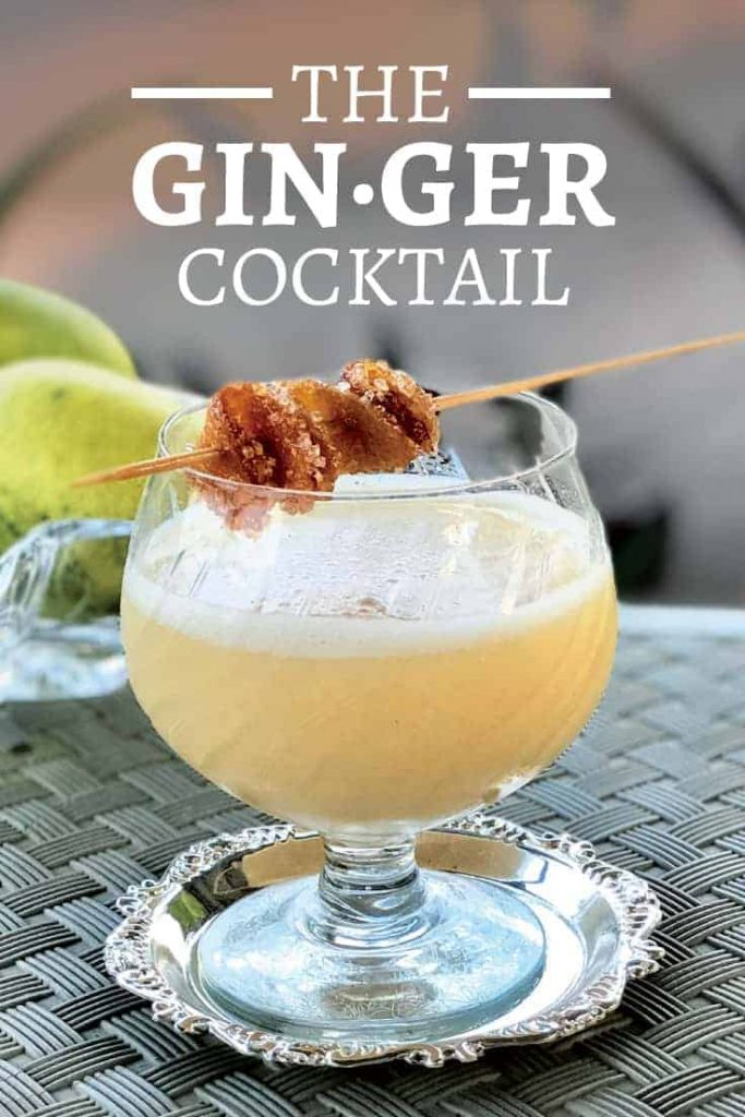 Ginger Cocktail by Gitanjali Budhrani